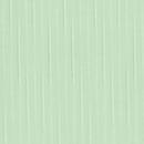 РЕЙН 5501 светло-зеленый
